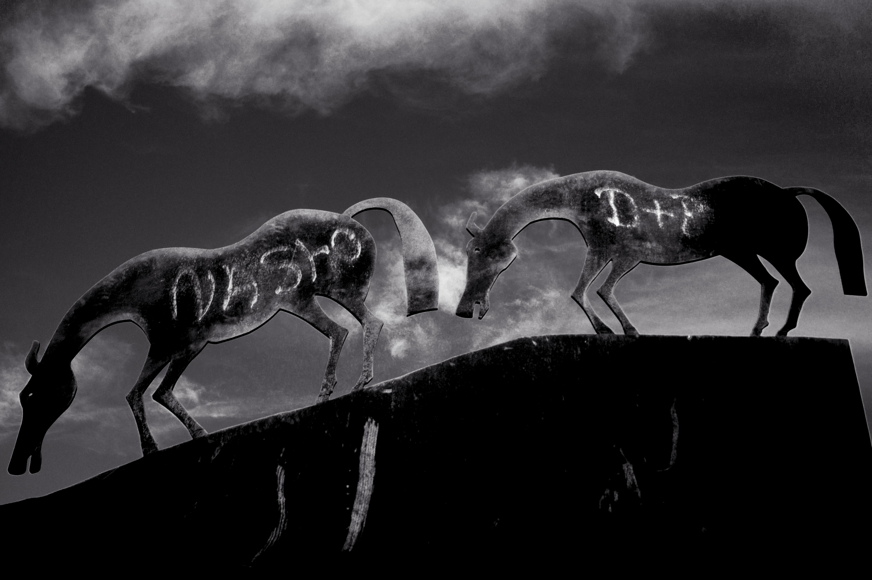 Fotografías de una migración indocumentada - Ruber Osoria