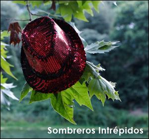 Exposición de fotografías - Sombreros Intrépidos - GOZAR Gallery - Barcelona