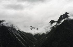 Proyecto Fotográfico PANGEA – El universo en una gota de agua