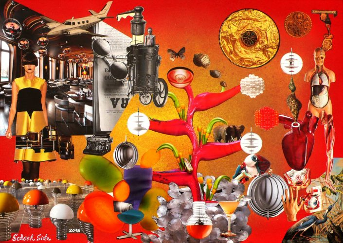 ANATOMIC MACHINERY (Seeder Collage. September 2015)