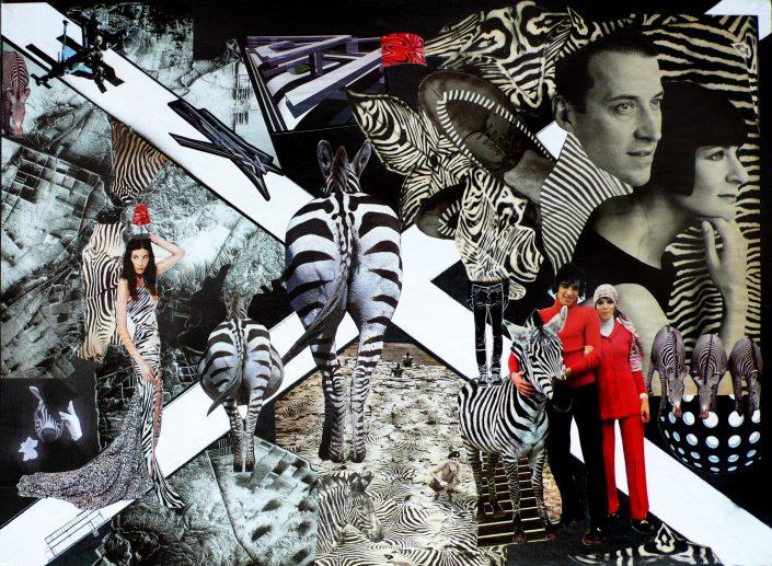 ZEBRA WALKS (Seeder Collage. March 2012)