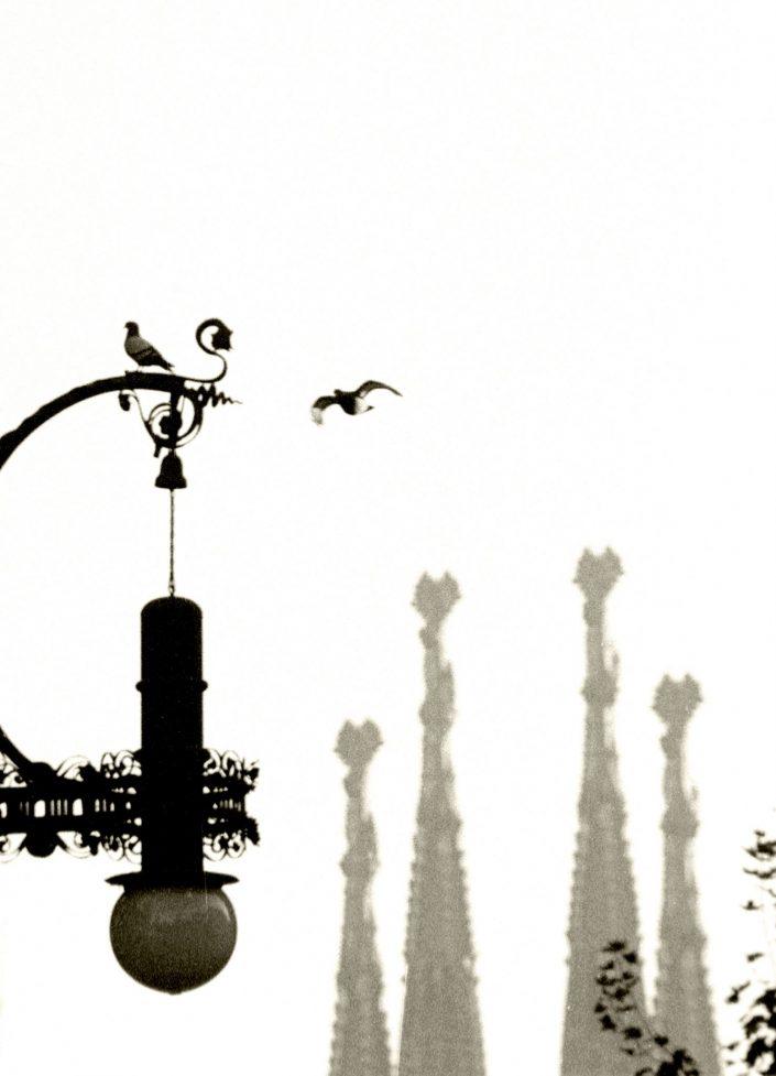Waiting for you - Av. Gaudí (Barcelona. September 1991)