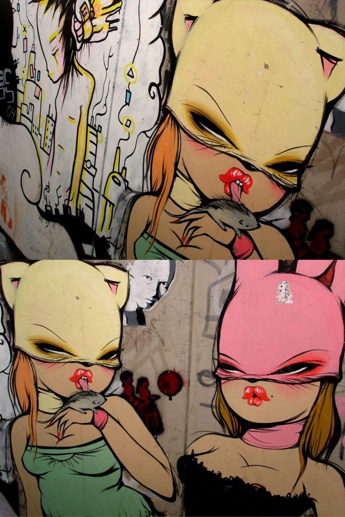 Miss Van :: Barcelona Street Art (Stencil Voices. 2003 - 2006)